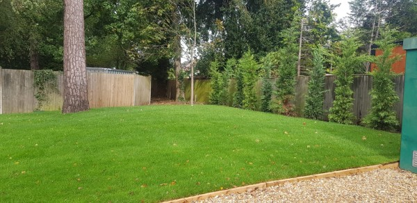 ALS Natural Lawn Turf (Over 300m2)