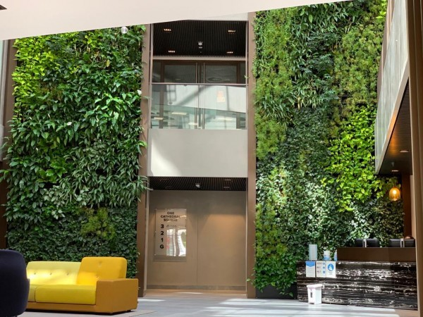 Living Wall Kit